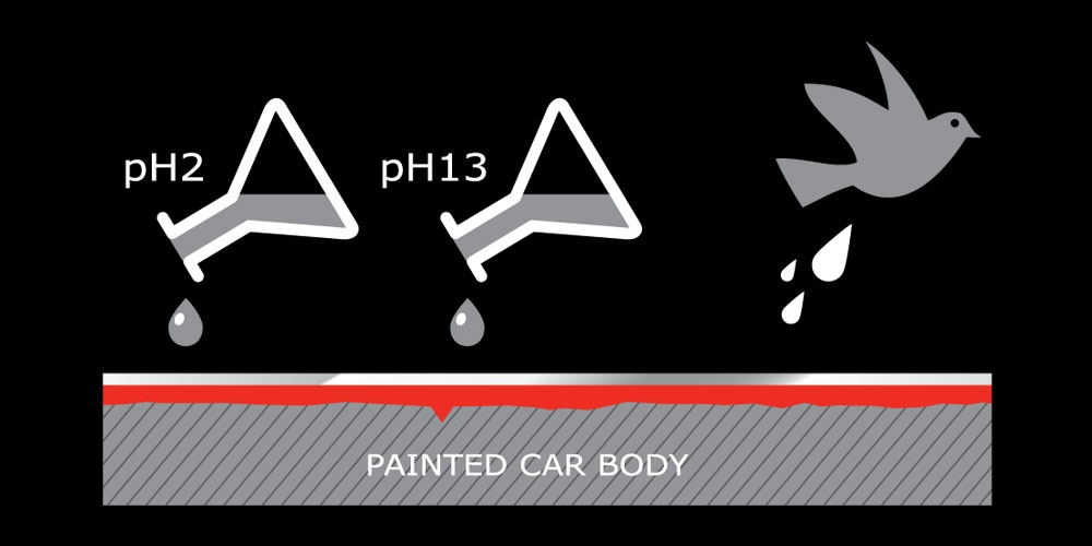 Paint protection warranty